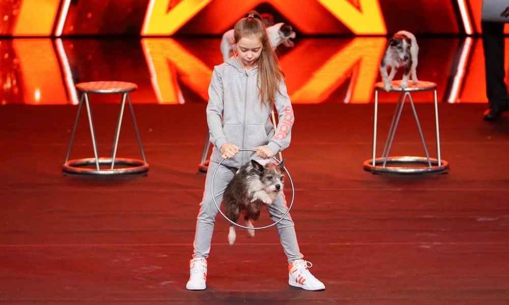 Supertalent 2017: Das sind die Finalisten!