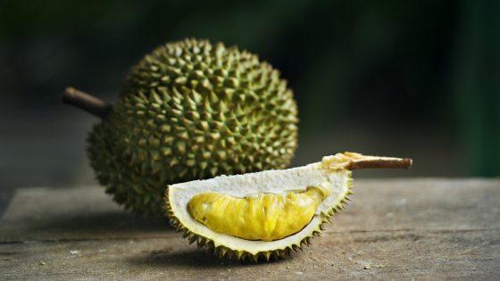 Kotzfrucht