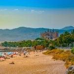 Killer-Quallen auf Mallorca: Erste Badeverbote verhängt!