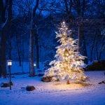 Weiße Weihnachten 2018: So stehen die Chancen!