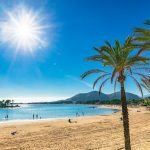 Neue Regeln: Das ändert sich 2019 auf Mallorca