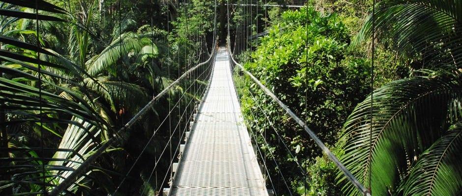 Dschungelcamp 2020 Standort