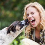 5 Gründe: Darum leckt dein Hund dich ab!