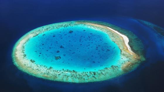 Hier entstehen Inseln durch tote Korallen
