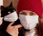 Studie bestätigt: Hunde & Katzen können sich mit Corona infizieren!