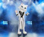 The Masked Singer 2020: Dieser Promi ist die Katze!