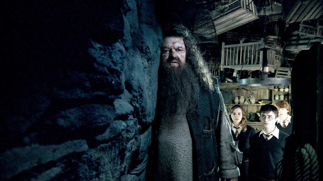 Wie Alt Ist Harry Potter Jetzt