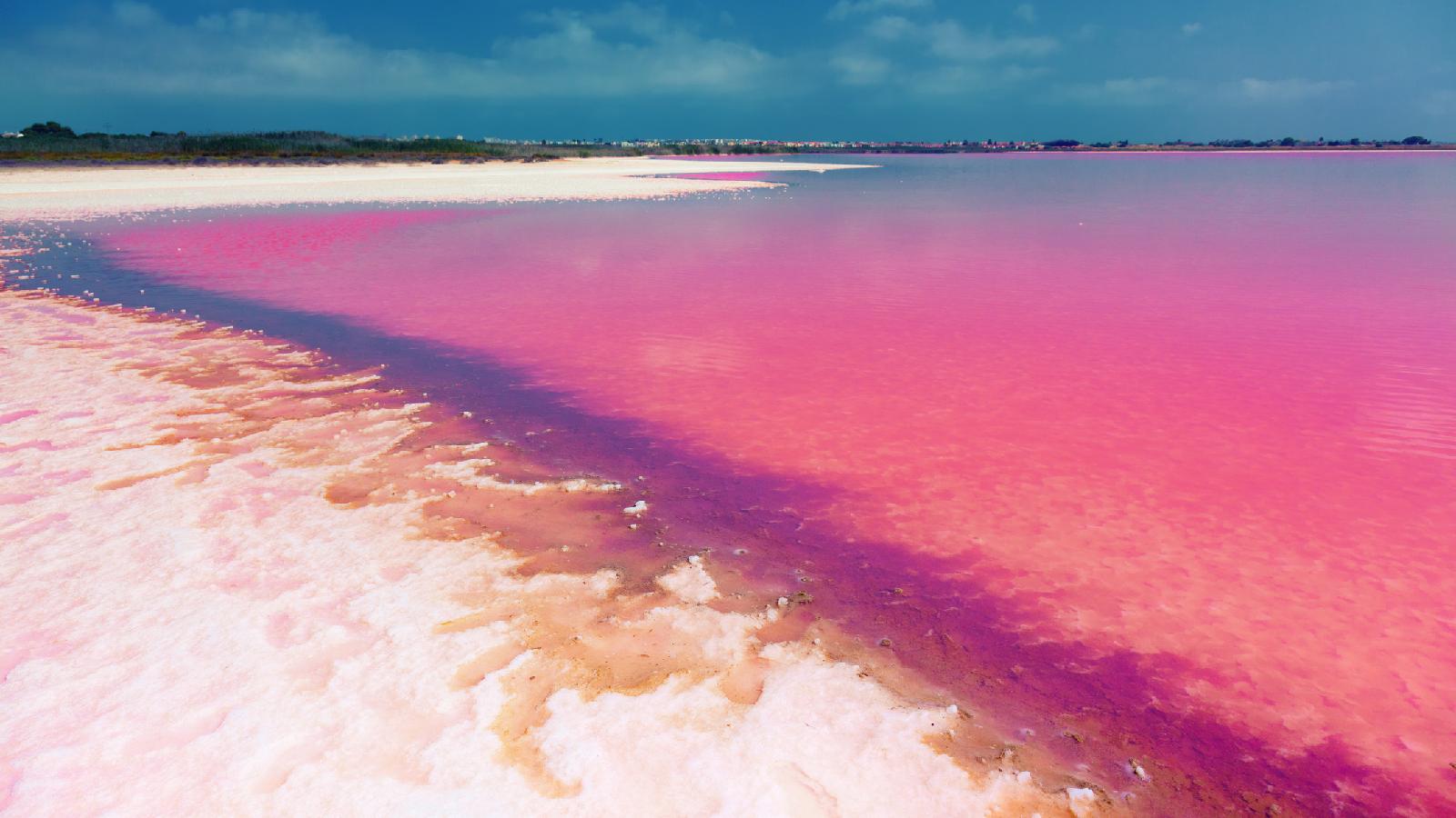 Deshalb sind diese Seen pink