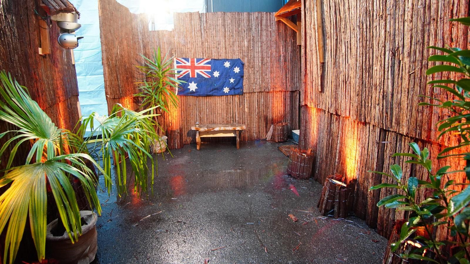 Das Tiny House in der Dschungelshow