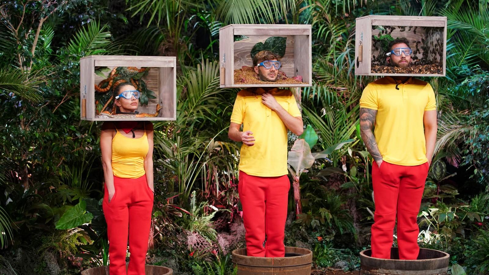 Christina, Oliver und Sam in der Dschungelshow