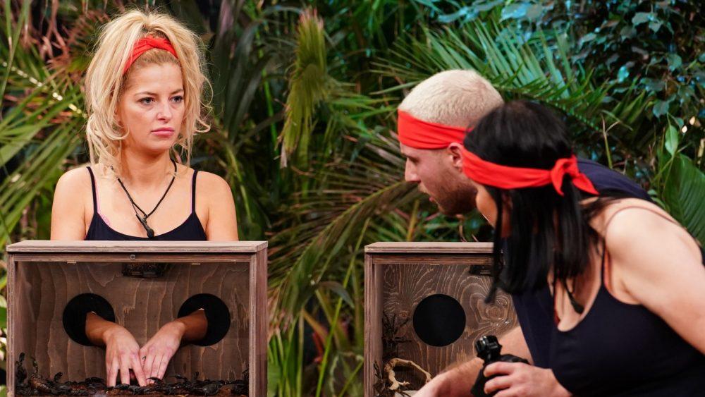 Dschungelshow-2021-Die-vierte-Gruppe-zieht-ins-Tiny-House-