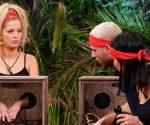 Dschungelshow 2021: Die vierte Gruppe zieht ins Tiny House!