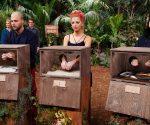 Dschungelshow 2021: So wird die Prüfung