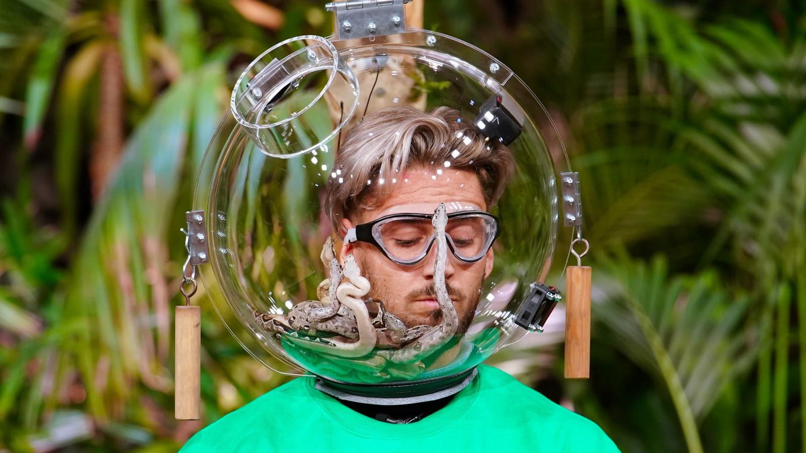 Mike Heiter in der Dschungelshow