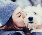 7 Dinge, die du tust - aber dein Hund hasst