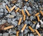 Ab 2025: Neuseeland verbietet das Rauchen!