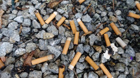 Neuseeland will rauchfrei werden