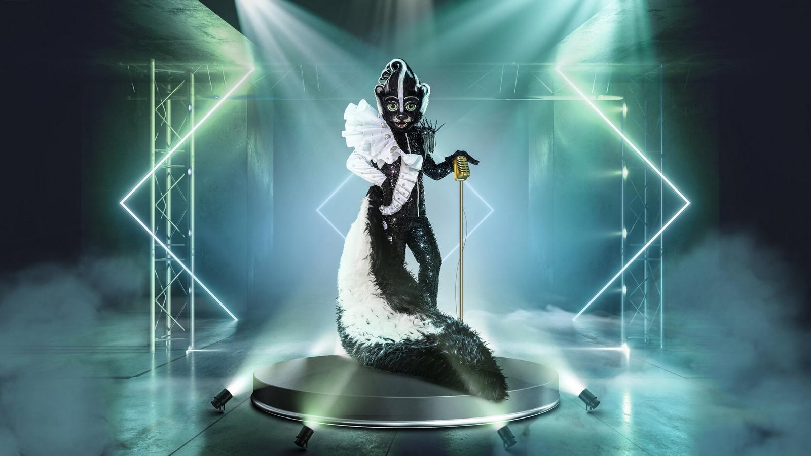 """Das Stinktier bei """"The Masked Singer"""""""
